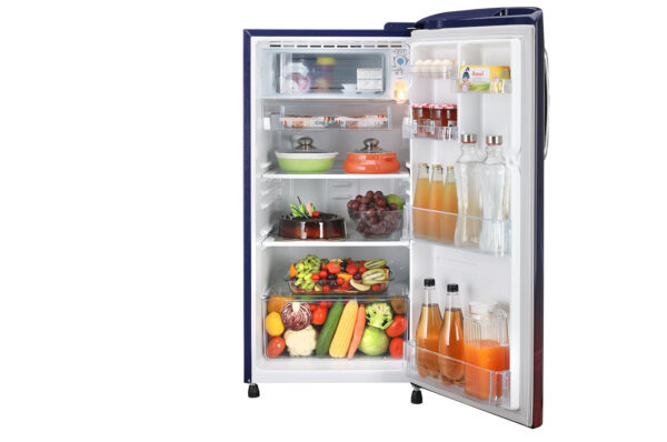 GL-B201ABPD-Refrigerators-Front-View-With-Content-DZ-02