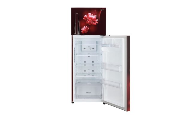GL-T322RSCY-Refrigerators-Front-View-Bottom-Door-Open-Without-Content-DZ-06